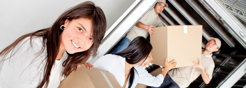 Professional Removalists Arcadia South
